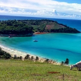 Haiti the country of the month!